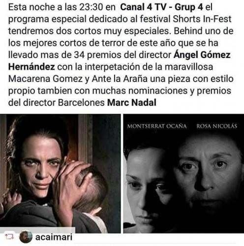ante-la-arana-emitido-en-canal-4-tv