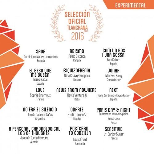Tlanchana Fest Festival de Cine y Arte Digital